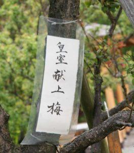 kenjou