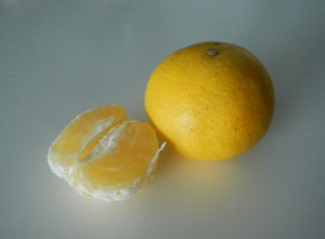 果肉の袋は柔らかくタネも柔らかで、そのままバリっといけます